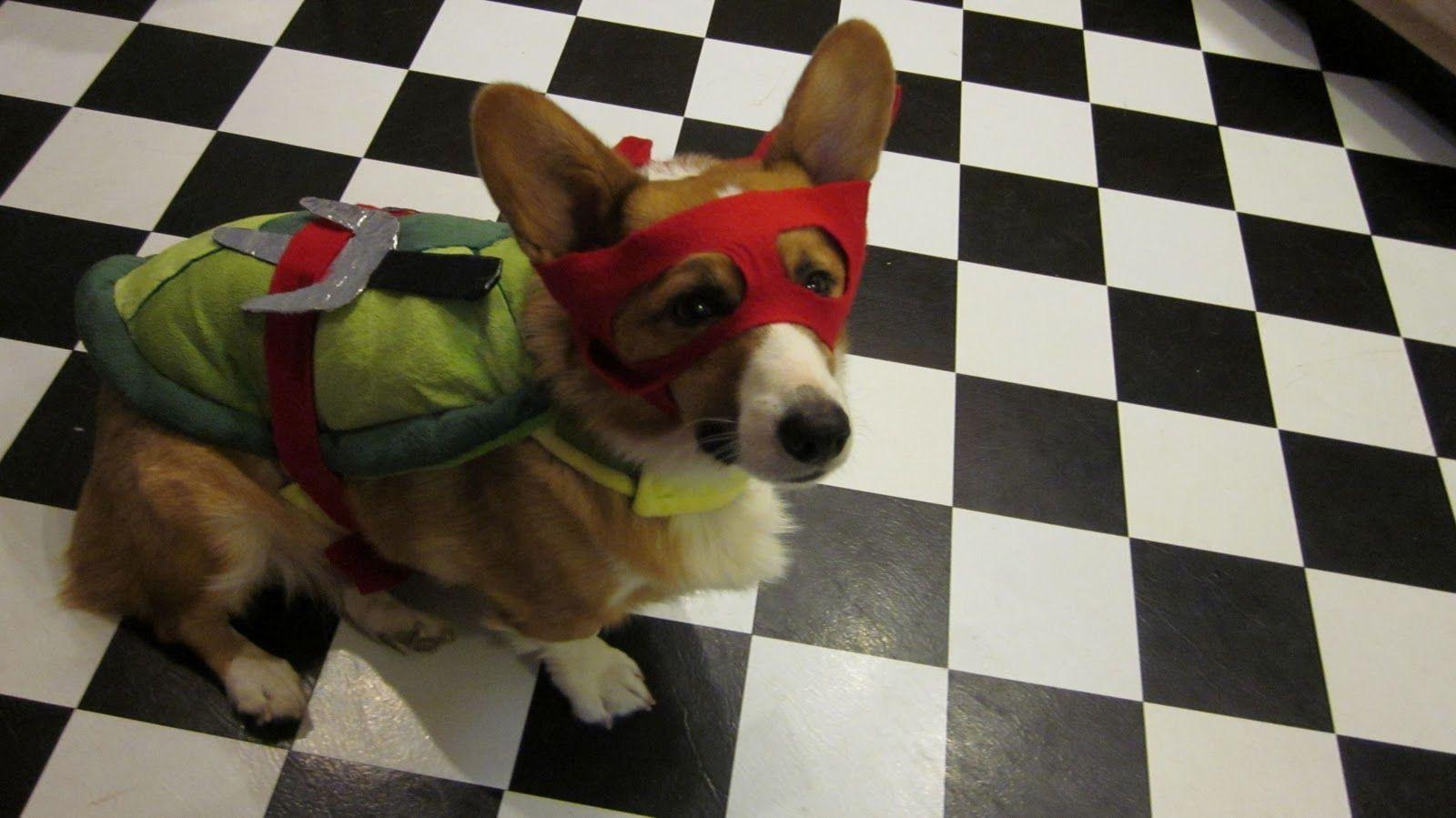 Ninja Turtles Raphael Dog Costume Pet Halloween Costumes