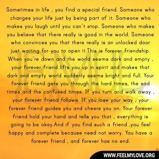 Sometimes In Life You Find A Special Friend Feel My Love