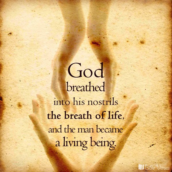 Genesis 2:7 Then the Lord God formed a man from the dust ...