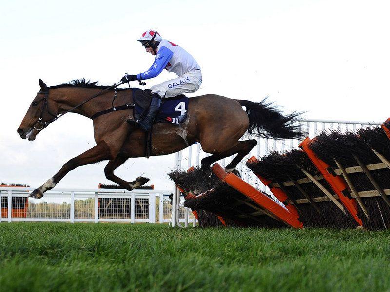 Reve De Sivola wins at Ascot. (mit Bildern) Pferderennen