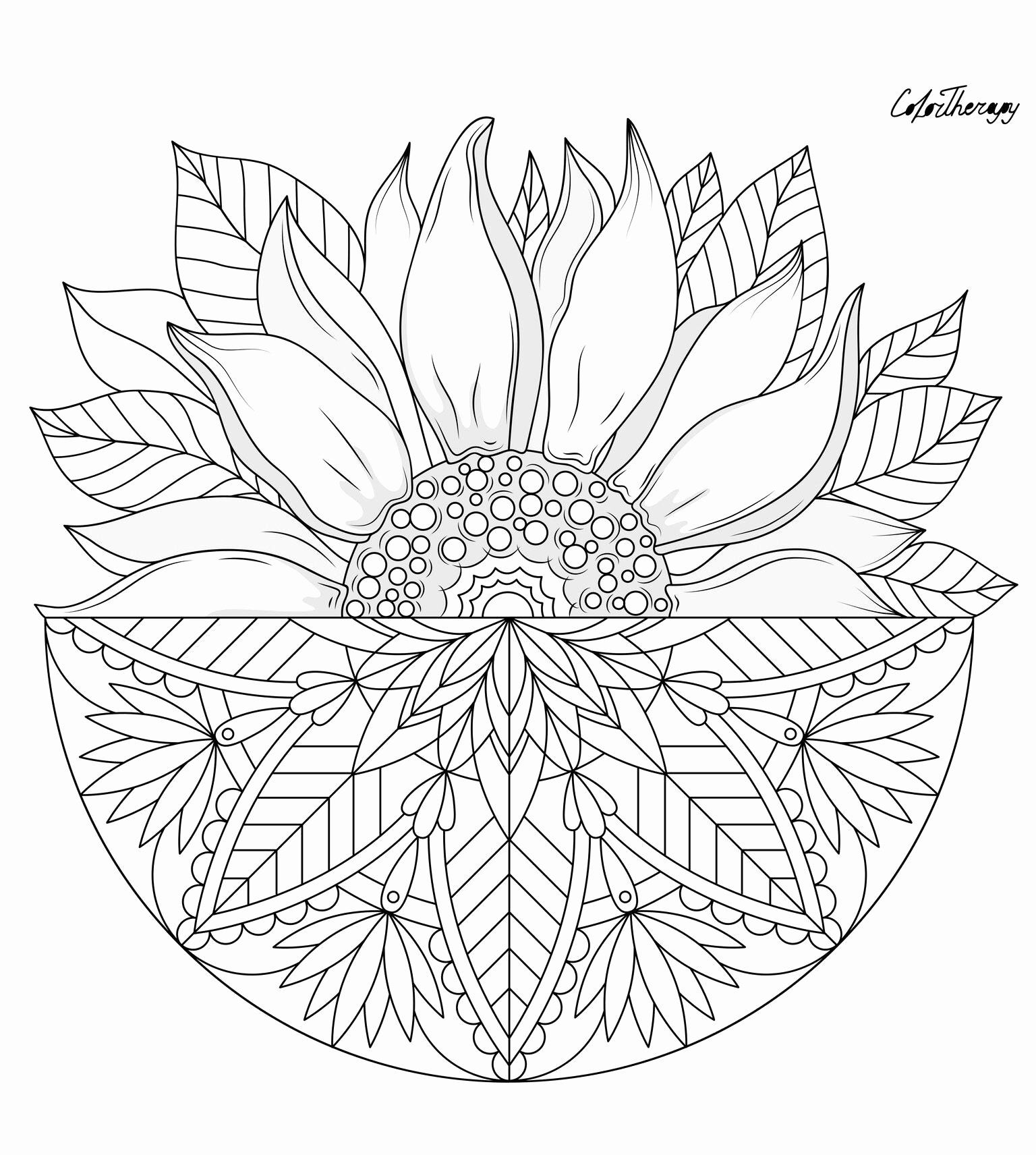 Design Originals Coloring Lovely Pin By Color Therapy App On Gift The Day Gotd Sunflower Coloring Pages Coloring Book Art Flower Coloring Pages
