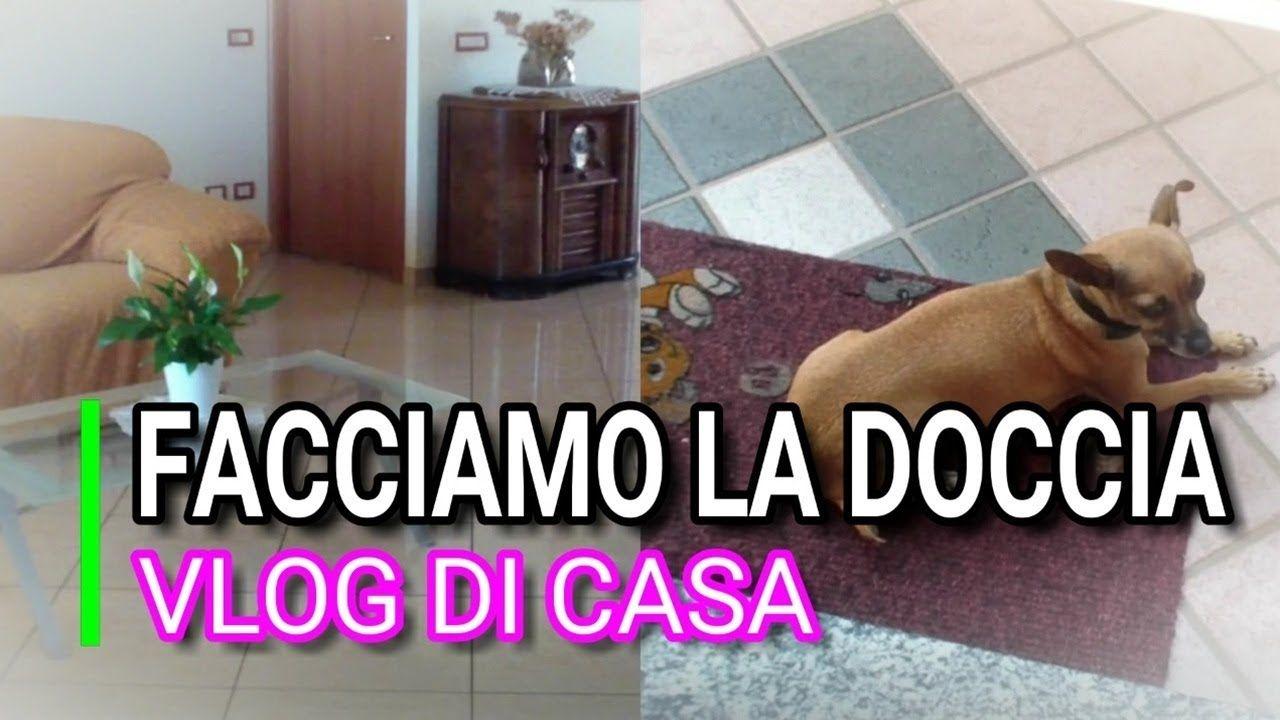 Bagno Cane ~ Vlog di casa agosto il bagno ai cani marlinda canonico