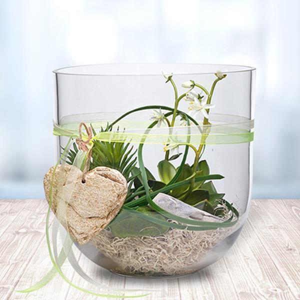 glas voll mit gr nen pflanzen tischdeko pinterest glas pflanzen und aktuelle news. Black Bedroom Furniture Sets. Home Design Ideas