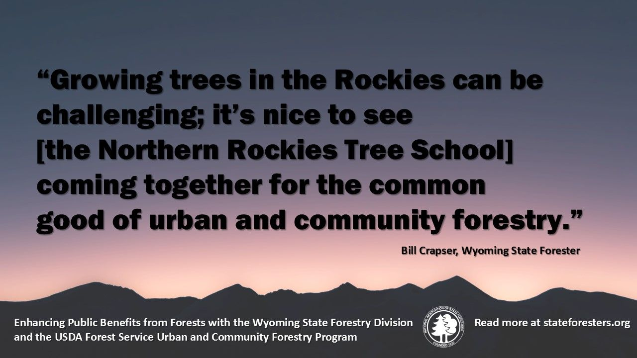 With support from the USDA Forest Service's Urban and