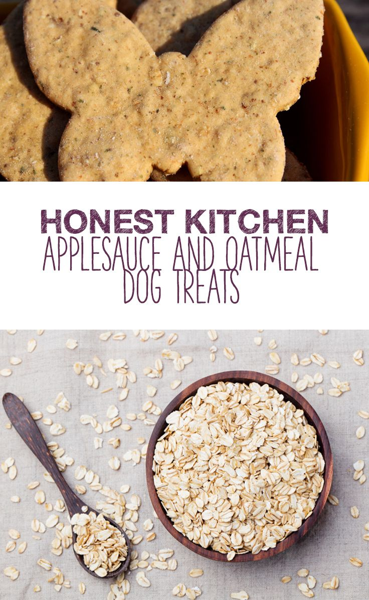 Applesauce And Oatmeal Dog Treats Dog Food Recipes Food
