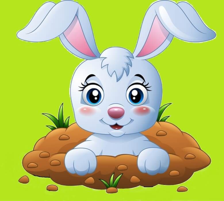 في أحد الأيام انتقلت أرنبة لتعيش في الغابة حيث كانت الأرانب هناك تلعب باستمرار داخل الغابة وفي صباح أحد الأيام تمت دعوة ه In 2021 Mario Characters Character Pikachu