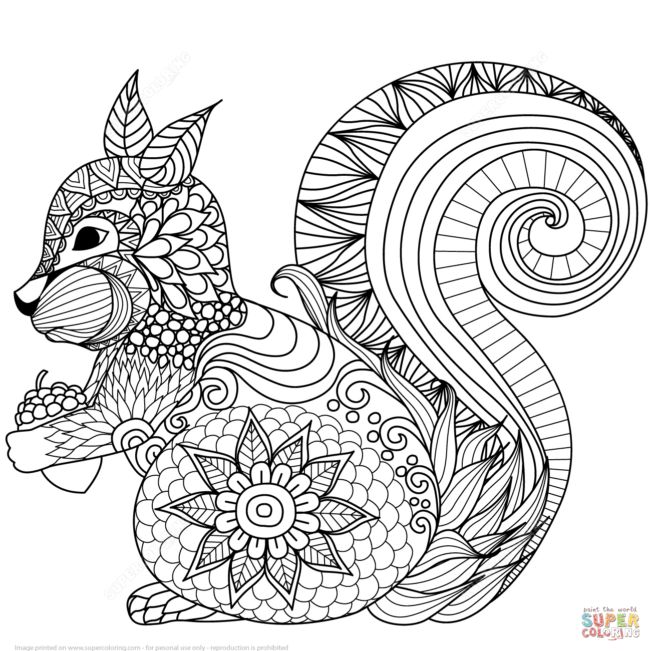 Lovely squirrel zentangle coloring page free printable for Printable coloring pages of squirrels