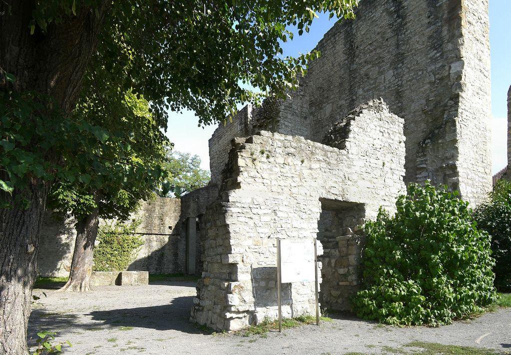 Burg Hofen (Stuttgart-Hofen)