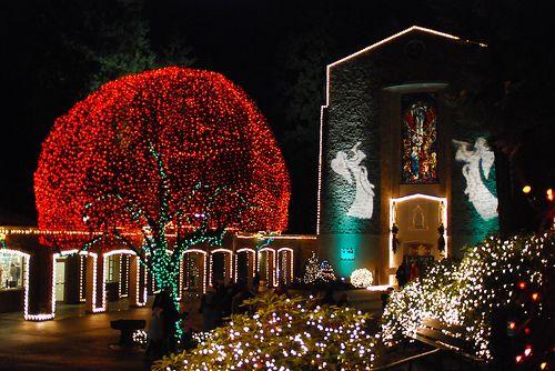 Portland Grotto At Christmastime Christmas Lights Festival Lights Oregon