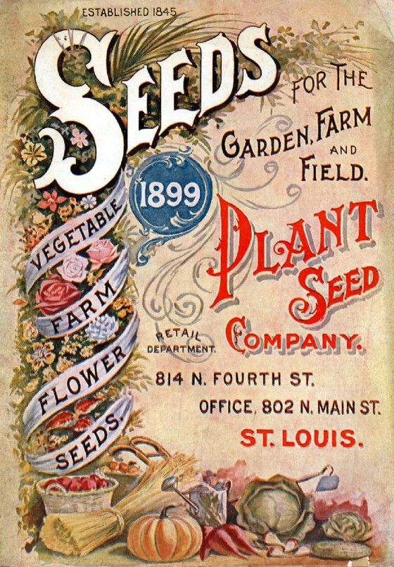 Henderson 5 Vintage Seed Cover Picture Art Print Poster A4 A3 A2 A1