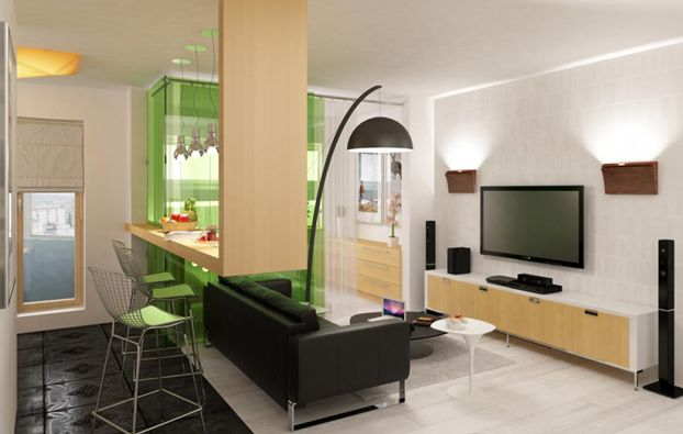 Modern Black and White Studio Apartment With A Touch Of Green