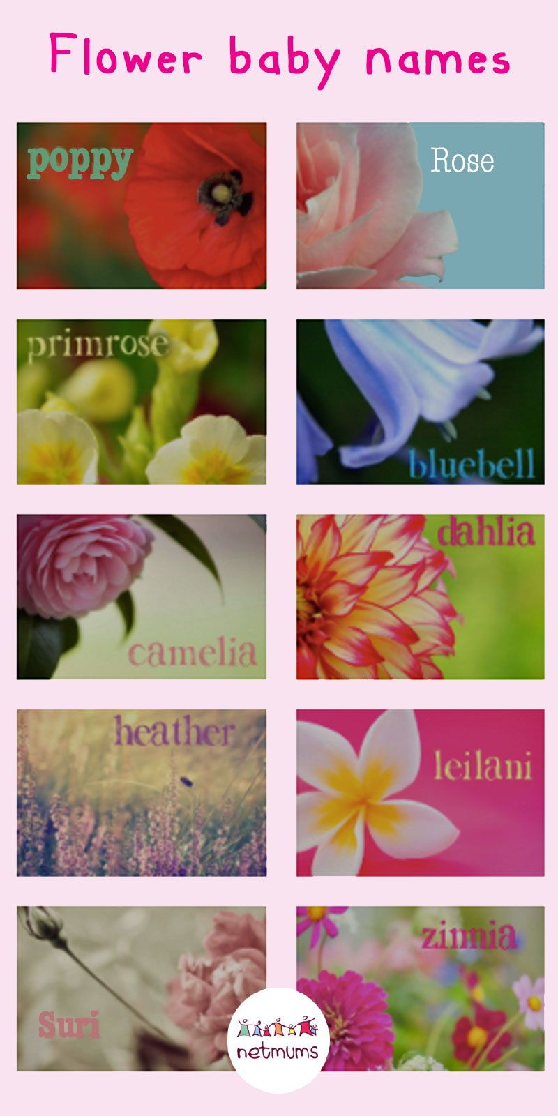 Flower baby names (With images) Baby names flowers