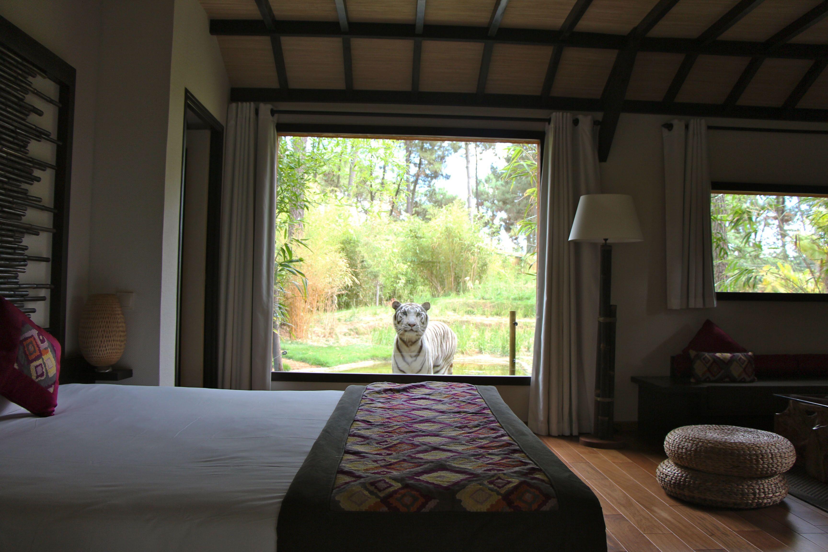 Bali Lodge Suite Parentale Offrant La Vue Sur L Univers Des