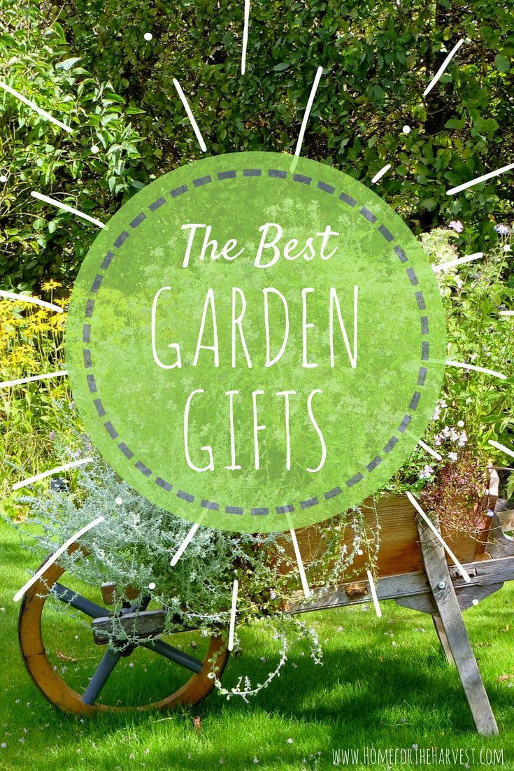 The Best Gifts For Gardeners: A Garden Loveru0027s Gift Guide | Gardens,  Vegetable Garden And Garden Ideas