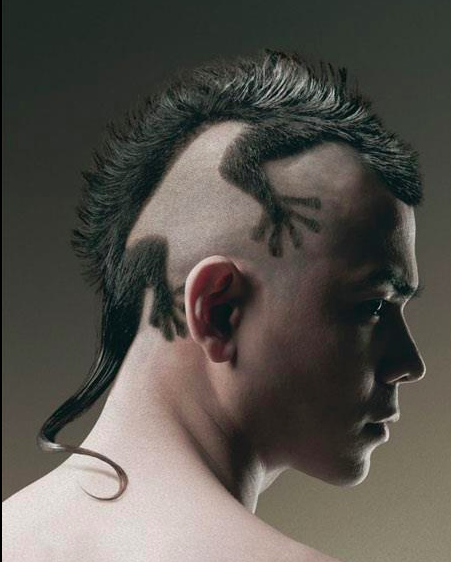 Skunk Hair Lizard Haircut Crazy Hair Creative Hairstyles