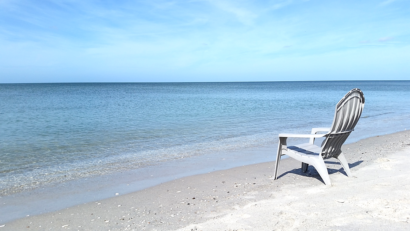 Relax on our secluded beach! | Florida hotels, Englewood ...