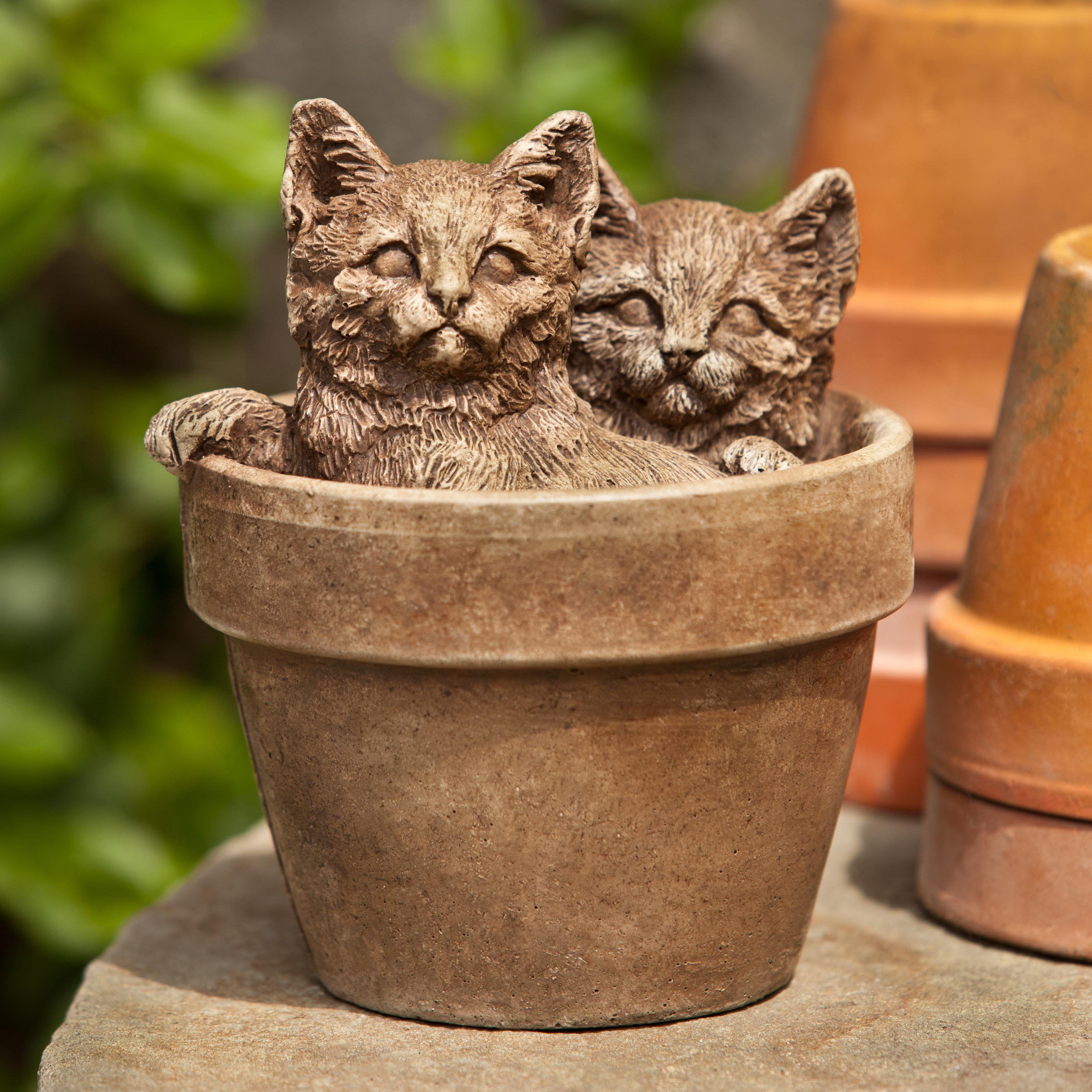 Campania International Little Sprouts Kitten Cast Stone Garden ...