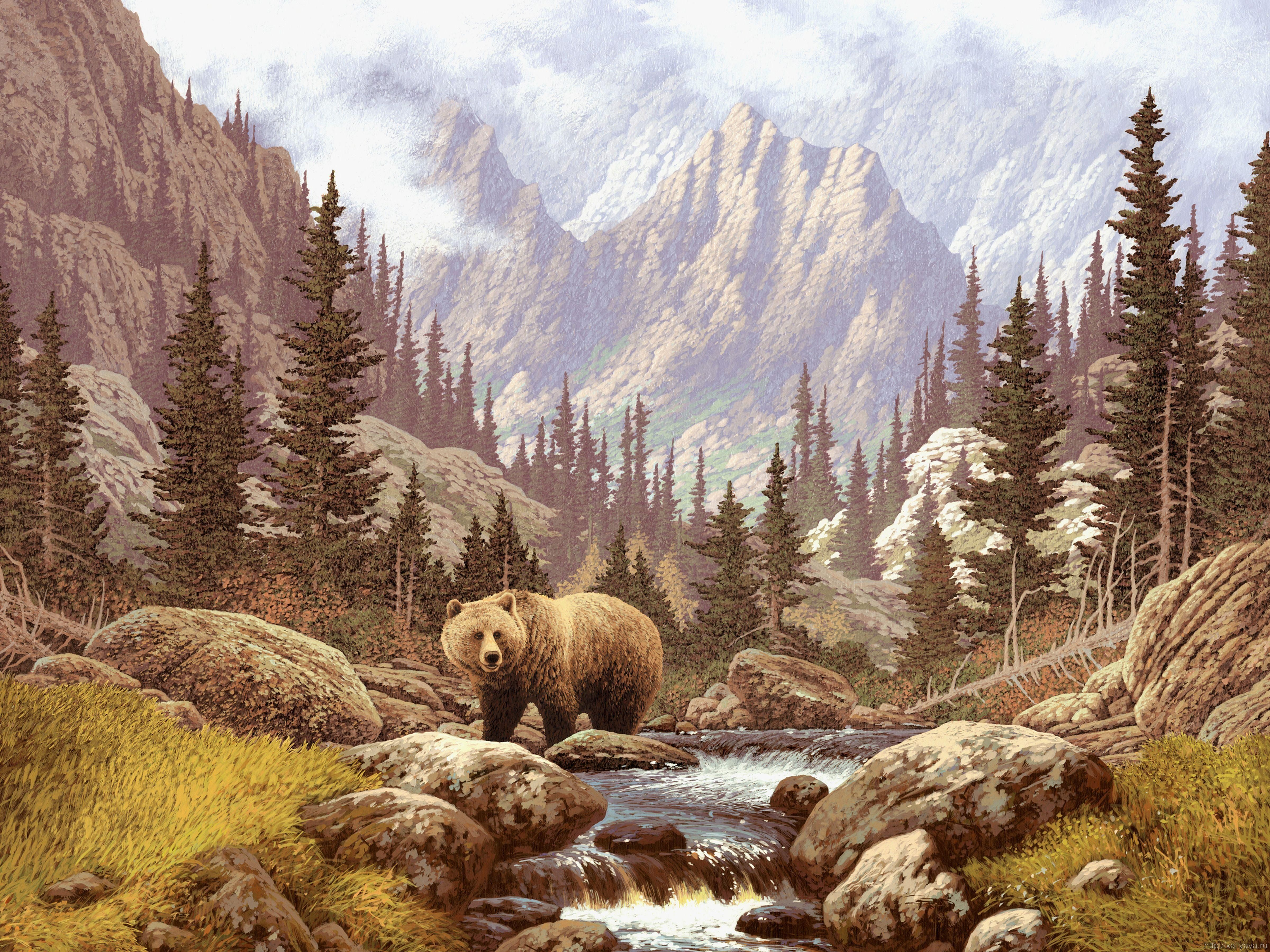The Bear Grizzly Bear Bear Paintings Animal Wall Art