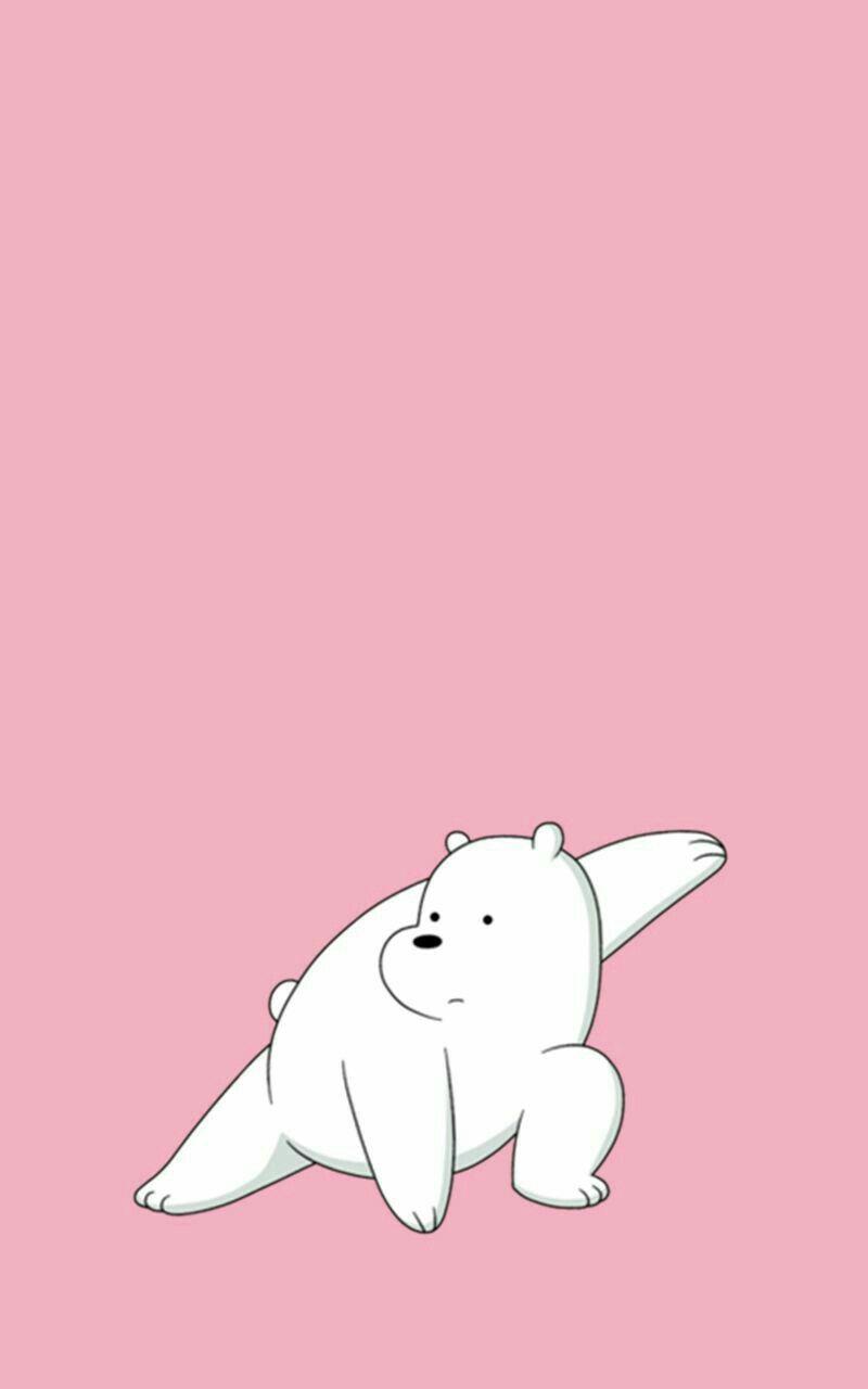 ✨Urso Polar é Um Ninja Wallpaper ✨