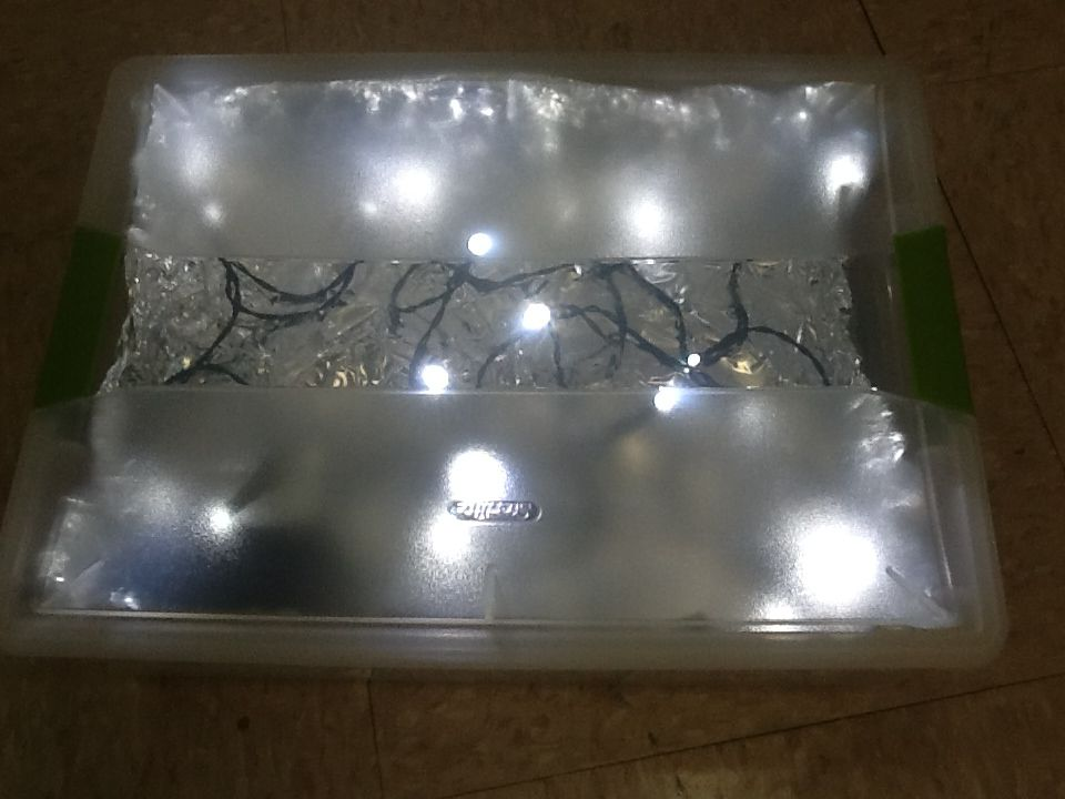 Homemade Light Box. Rubbermaid Clear Container, Battery Operated Lights (no  Cords), And Lined With Foil.