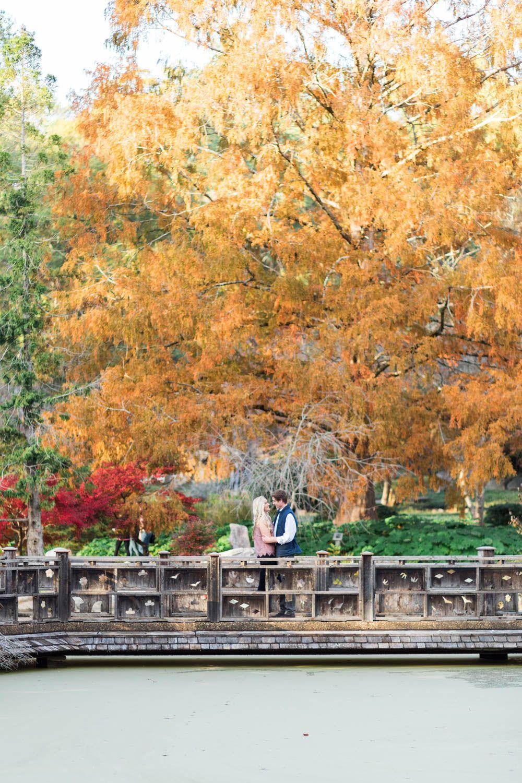 Birmingham Botanical Gardens Engagement Photos | Engagement, East ...