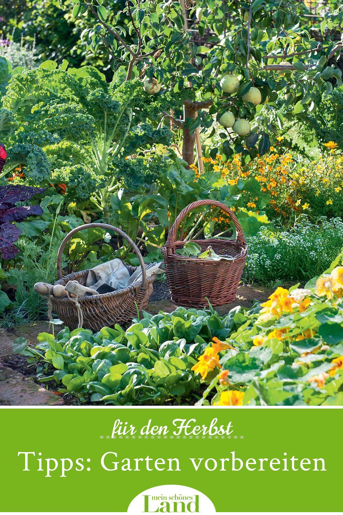 Tipps Und Tricks Garten Fur Den Herbst Vorbereiten Garten Pflanzen Gartentipps