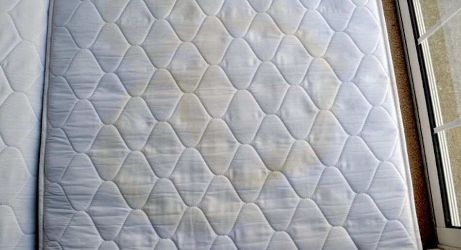 Remove Urine Smell From Mattress Hydrogen Peroxide