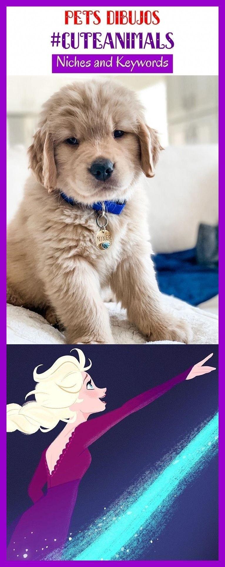 Pets dibujos #cuteanimals #niches #seo #keywords #animals. pets dogs, pets cats,... -  - #animals #Cats #cuteanimals #dibujos #Dogs #keyword #keywords #niches #Pets #seo
