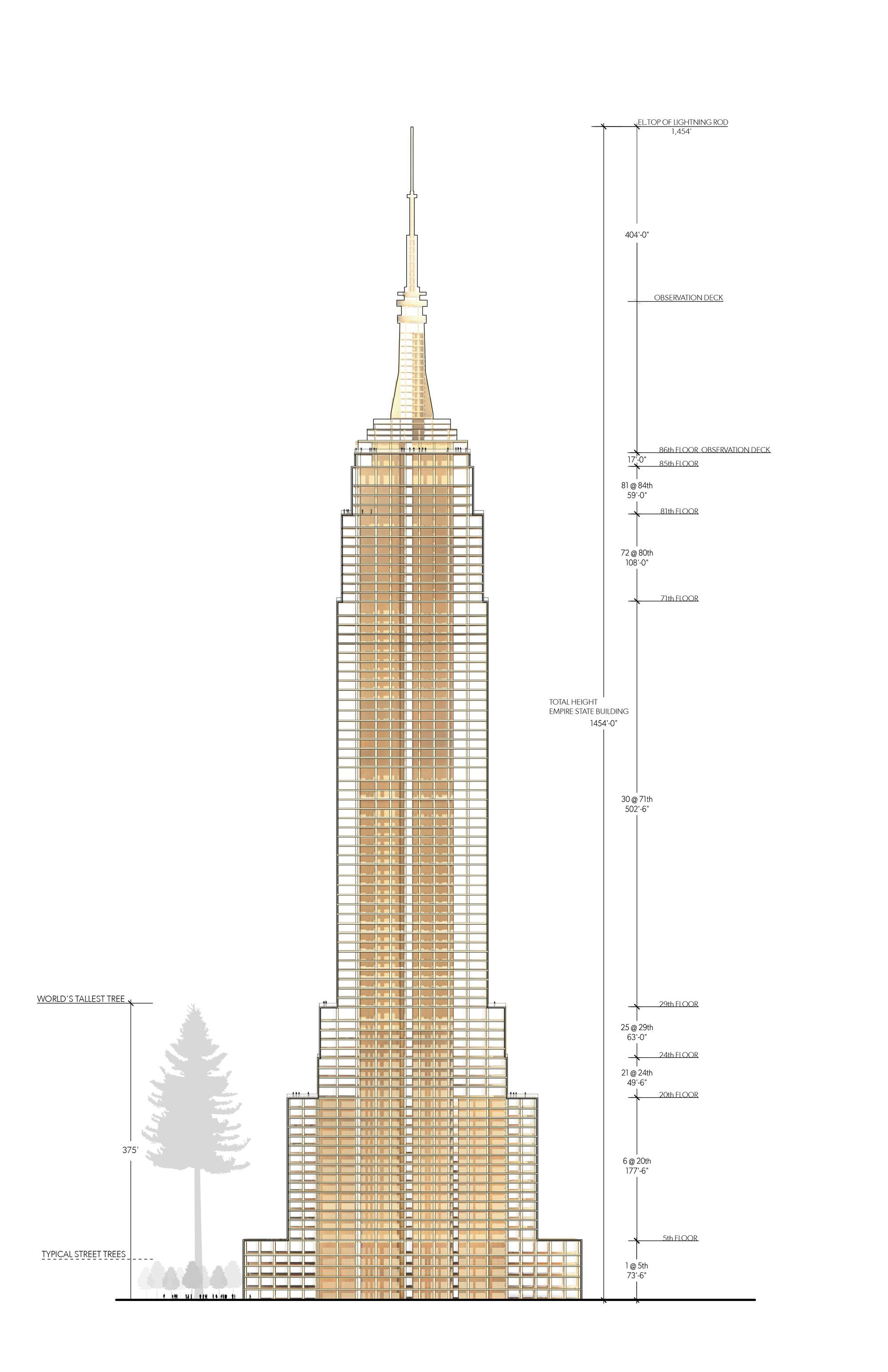 Galeria De Seria Possível Construir O Empire State Building Com Madeira 2 Empire State Building Empire State Empire State Building Drawing