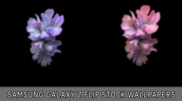 Download Samsung Galaxy Z Flip Wallpapers Droidviews Samsung Galaxy Samsung Galaxy