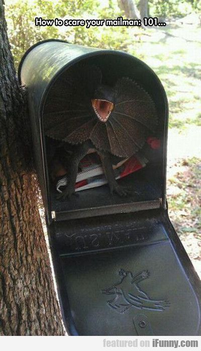 How To Scare You Mailman...