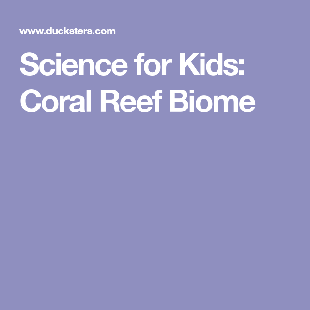 Science For Kids: Coral Reef Biome