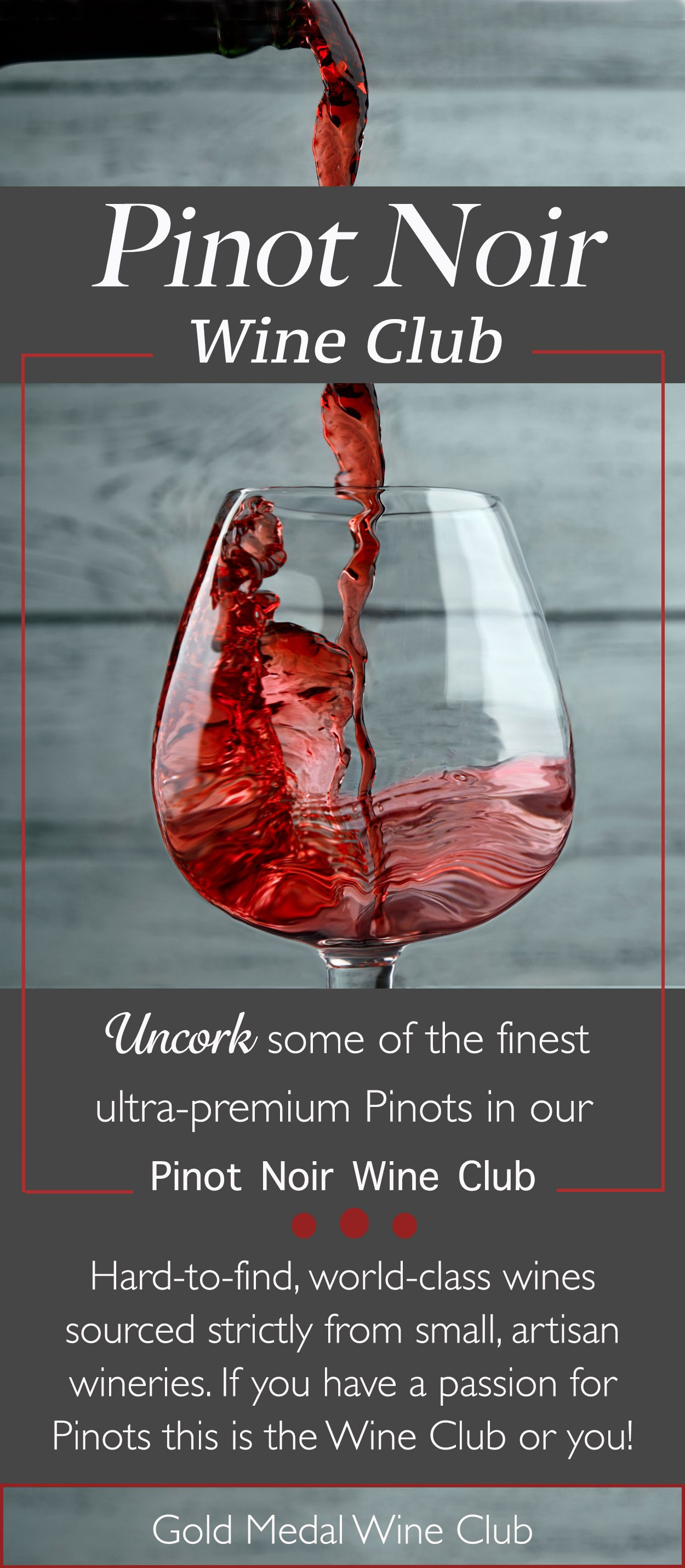 Are You A Pinotfile Our Pinot Noir Wine Club Has Been Waiting For You Wine Clubs Wine Wine Source