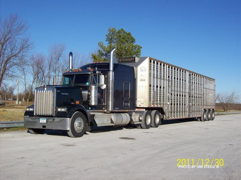 Cattle Trucking St. Paul. MN Trucks, Cattle, Feeder cattle