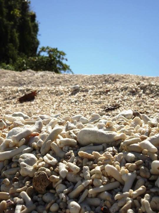 Nosy Fanihi - Spiaggia di coralli