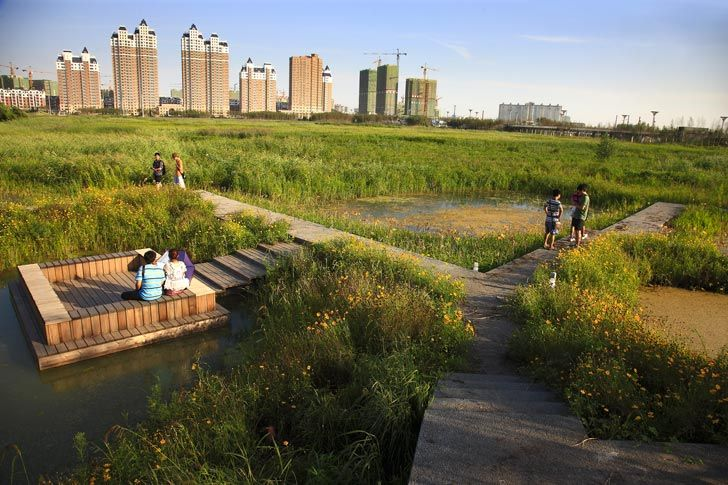 Qunli Stormwater Wetland Park Stores Rainwater While Protecting