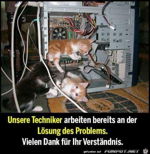 lustiges Bild & # 39; unsere techniker.jpg & # 39; vom Floh. Eine von 14329 Dateien in #funnypictures