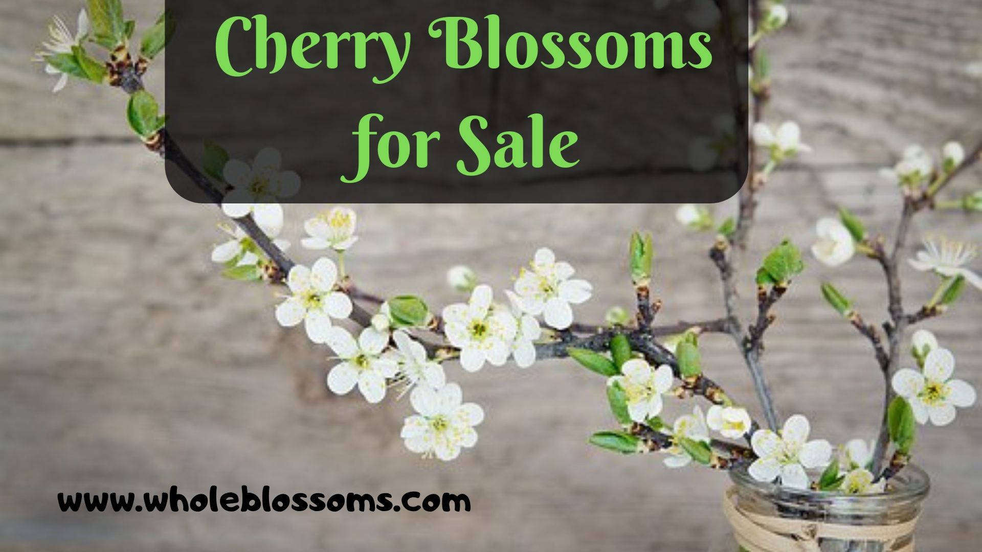 Select And Buy Cherry Blossom Branches From Whole Blossoms Cherry Blossom Branch Blossom Cherry Blossom