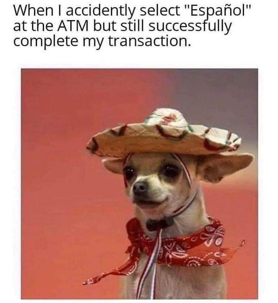 Meme S Quotes Memes Its Memes Laughing Memes Memes Quotes Funnie Memes I Meme Truthful Memes Happy Meme Funny Relatable Memes Funny Dog Memes Dog Memes
