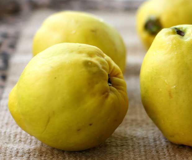 Sifali Meyve Bitkiblog Com Quince Fruit Fruit Quince