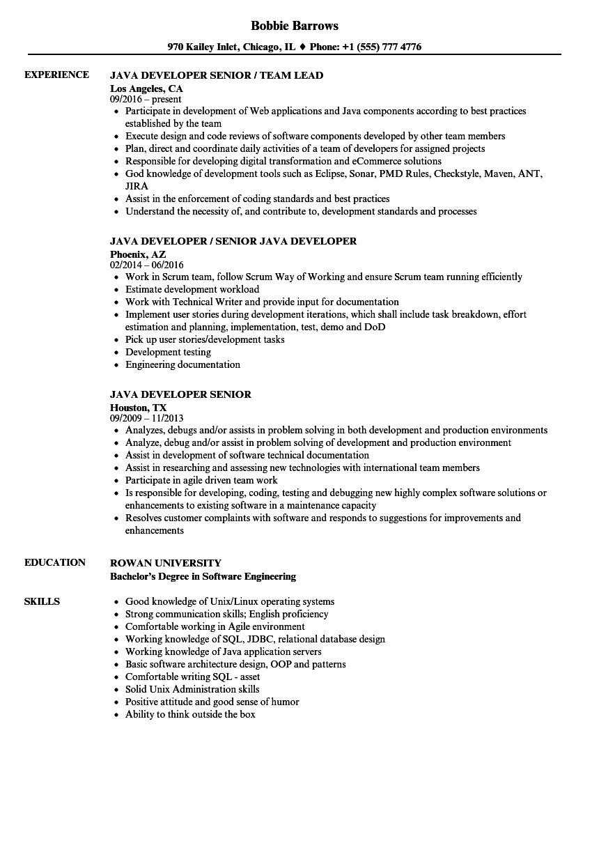 Resume Examples Java Developer Resume examples, Good