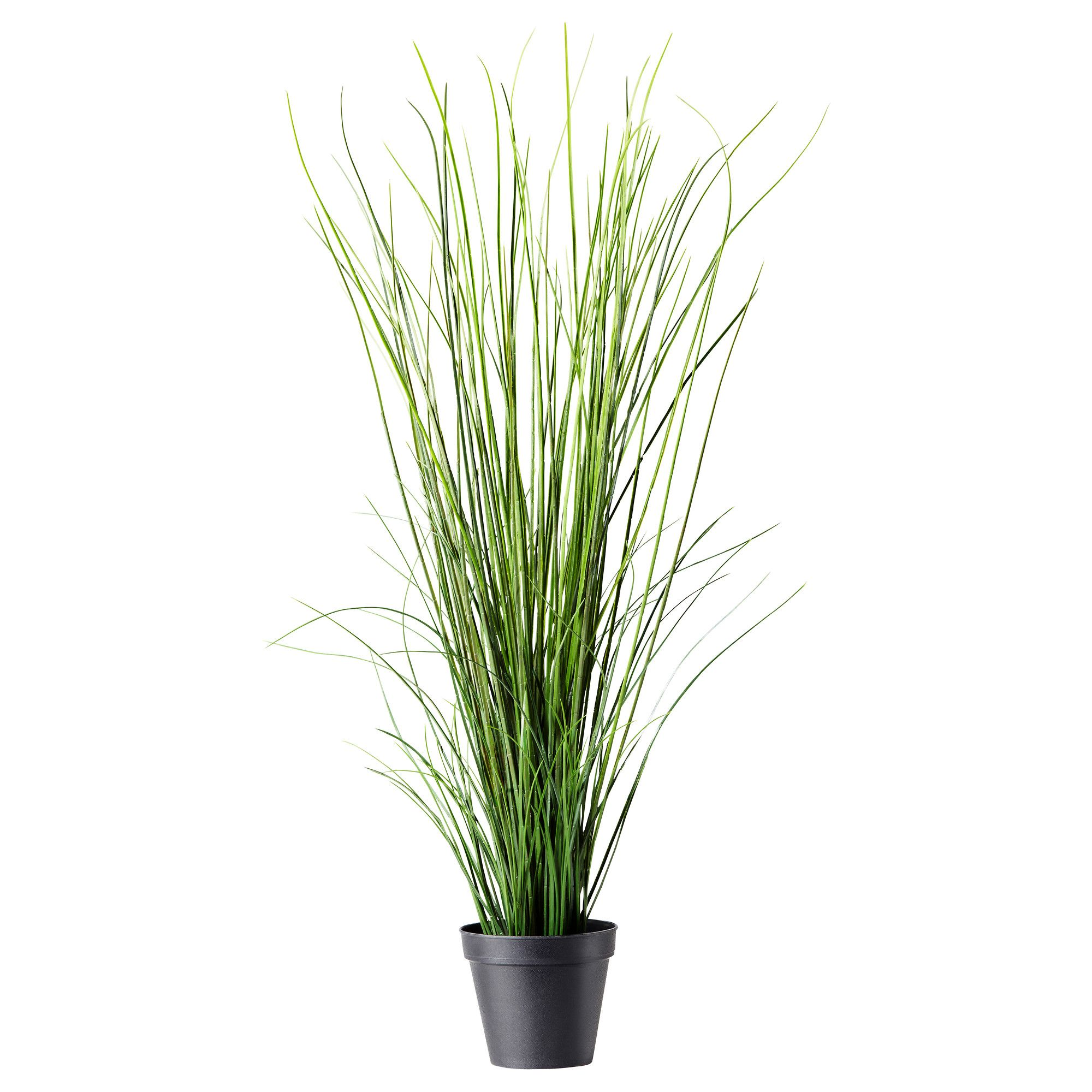 Fejka kunstig potteplante gress fake plants office for Long grass plants