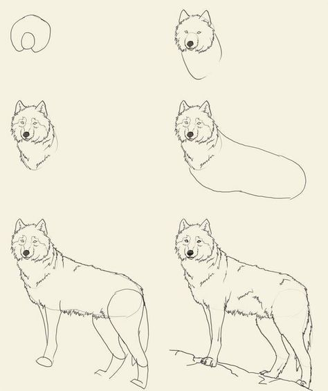 Drawing people step by step