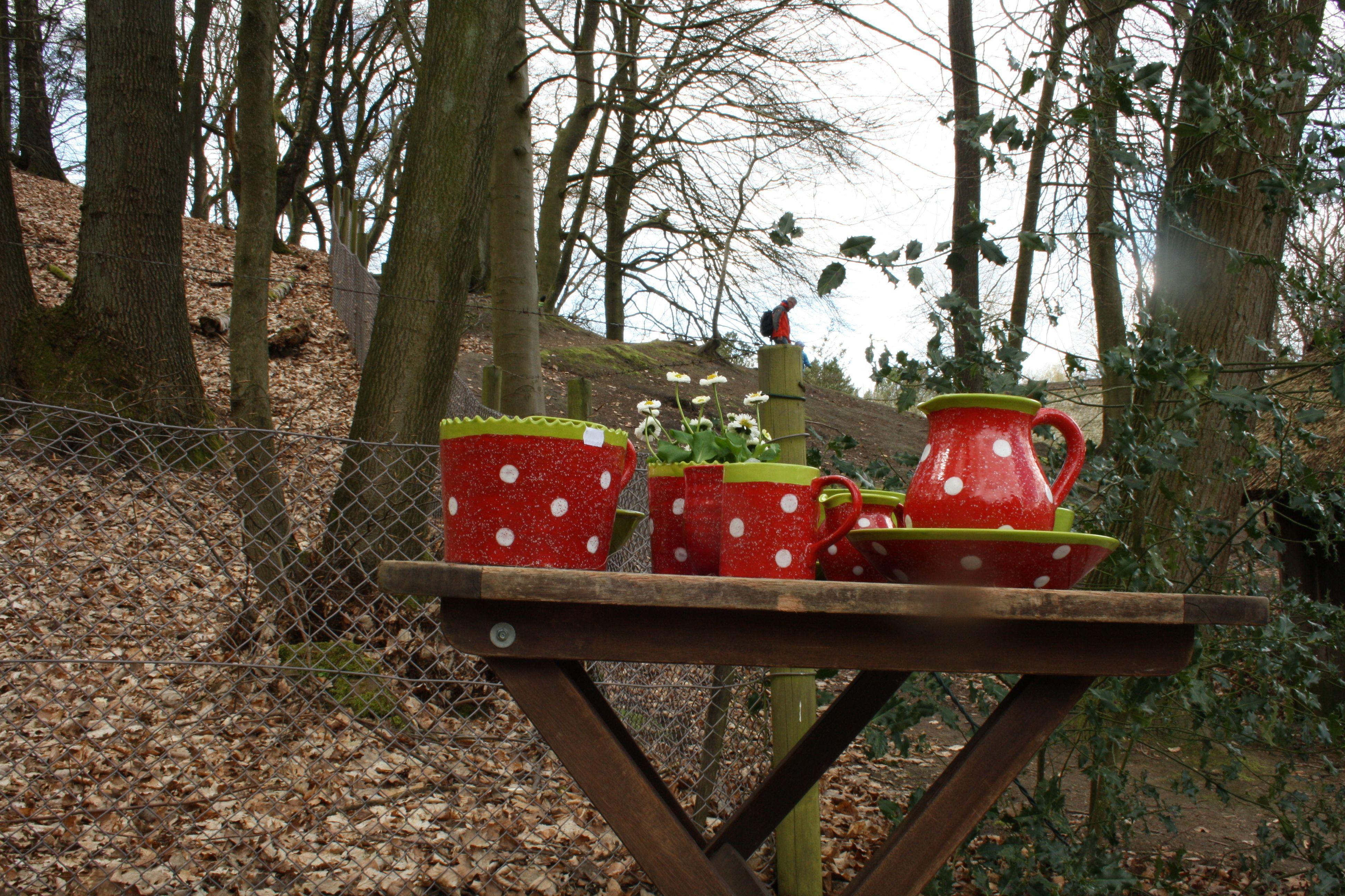 Wildkrauter Fur Den Balkonkasten Balkonkasten Gartenarbeit Bepflanzung