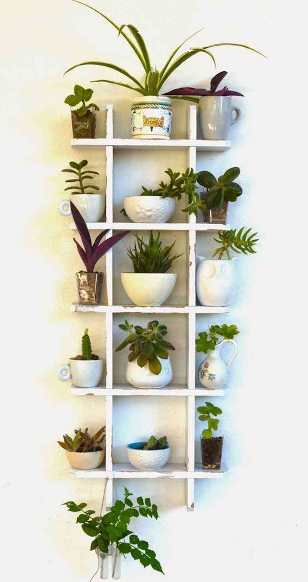 Indoor Gardens For Your Home | Plant decor, Herbs indoors ... on Amazing Plant Stand Ideas  id=54906