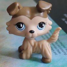 Lps Collection Littlest Pet Shop Brown Collie Dog Rare Toy 2
