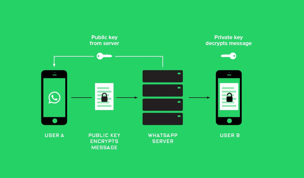 Forget Apple vs. the FBI: WhatsApp Just Switched on Encryption for a  Billion People | Encrypted messages, End to end encryption, Security  solutions