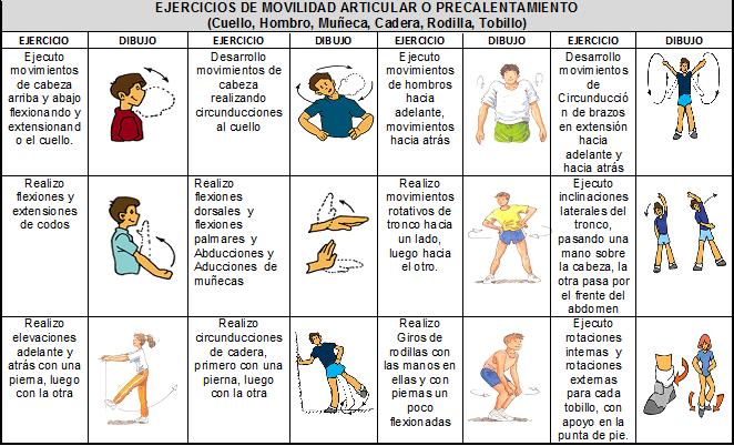 Movilidad Articular Ejercicios De Educacion Fisica Ejercicios De Calentamiento Ejercicios