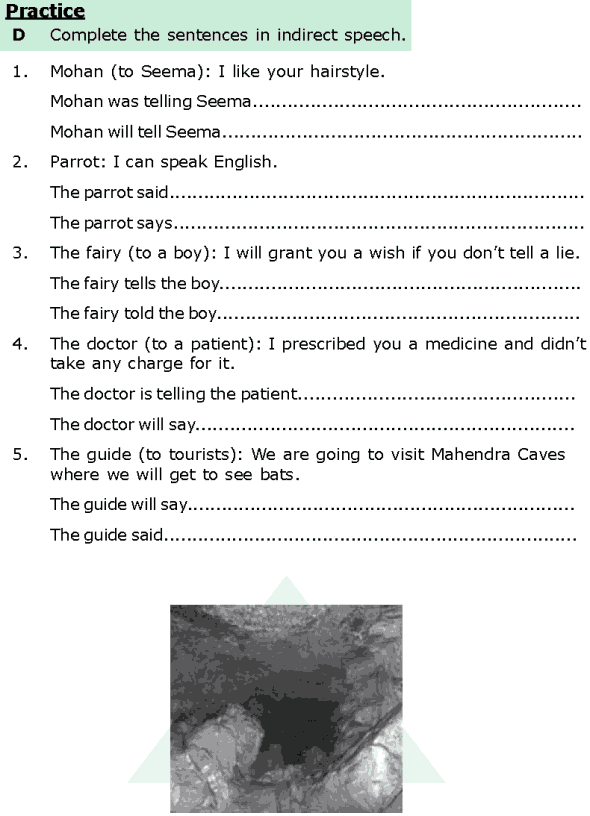 Grade 6 Grammar Lesson 13 Direct and indirect speech (4) | English's ...