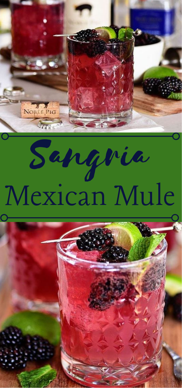 Sangria Mexican Mule Cocktail Recipe Healthydrink Sangria Cocktail Party Smoothie Sangria Resep Minuman Tequila